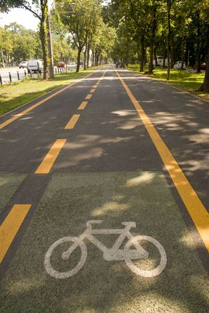 City bike lane along shady wooden street Stock Photo - 3567549