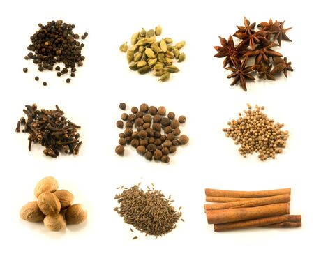 Chart of nine spices isolated on white background