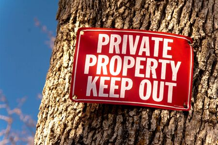 Red Keep Out sign nailed to tree trunk, a sliver of blue sky on left of frame photo