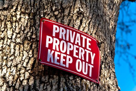 red Keep Out sign nailed to tree trunk, a sliver of blue sky on right of frame photo
