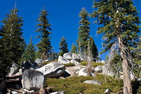 Side of mountain with rocks, boulders, trees and bushes against a bright cloudless blue sky photo