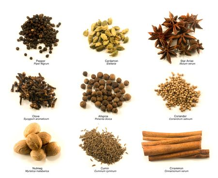 Chart of nine common spices with name under each pile