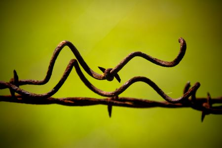 barrie: Macro of strung twisted barbed wire against a green field Stock Photo