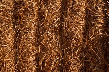 Bundled block of hay closeup Stock Photo - 7749780