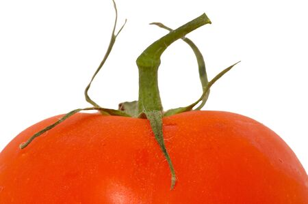 over-white photo of the top of a tomato showing stalk