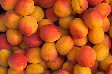 Fresh Apricots in the Market