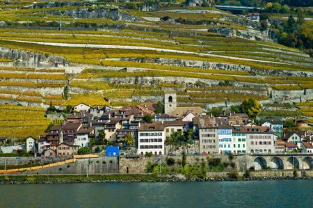 Small Swiss village of Saint Saphorin on Lake Leman, surrounded by vineyards photo