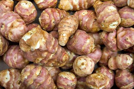 Fresh Jerusalem Artichokes (sunroot, sunchoke) in market