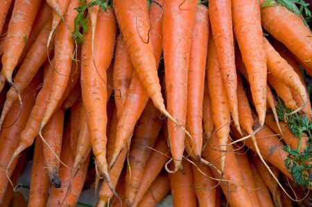 Fresh organic carrots in farmers market