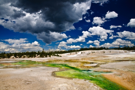 Norris Geyser Basin, Yellowstone National Park, Wyoming. Showing green, yellow and orange algae living in the warm alkali water of the stream