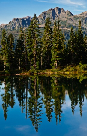 Lake reflection, showing Treets and distant mountain, vancouver island Stock Photo