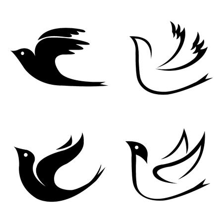 Set of flying birds on white background