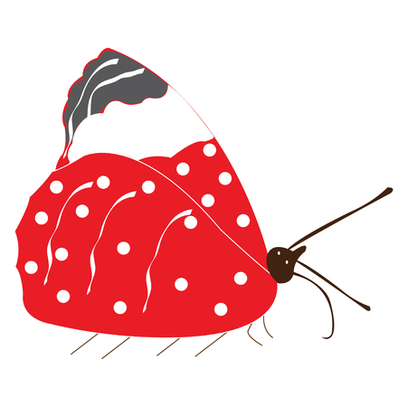 Vector illustration of red butterfly with folded wings