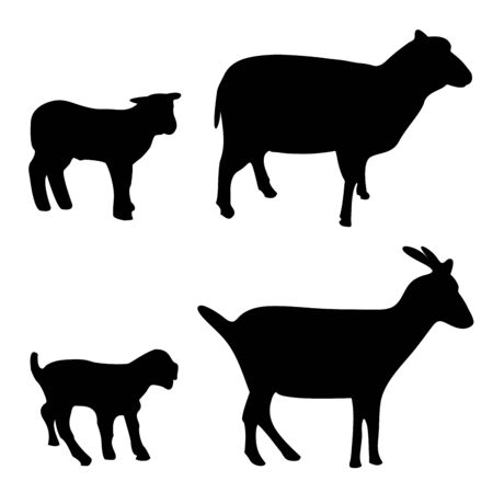 Vector illustration of sheep and goat silhouettes isolated on white background Stock Illustratie