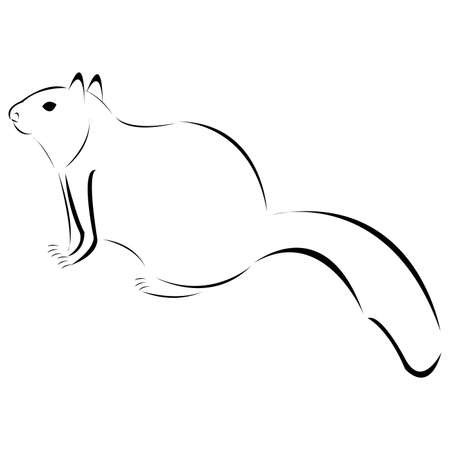 Stylized black and white squirrel vector illustration