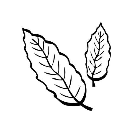 Black and white vector illustration of two leaves on white background