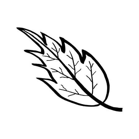 Black and white vector illustration of leaf on white background