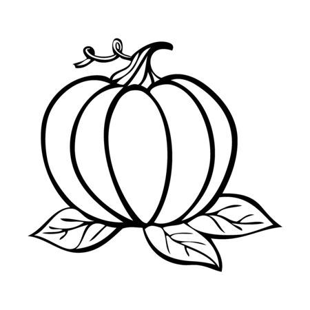 Black and white vector illustration of a pumpkin