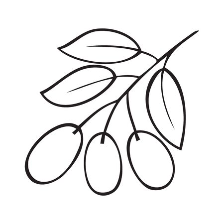 Black and white vector illustration of a branch of olive 일러스트