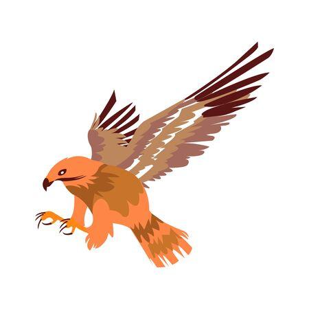 A Beautiful And Majestic Hunting Bird In Flight 写真素材