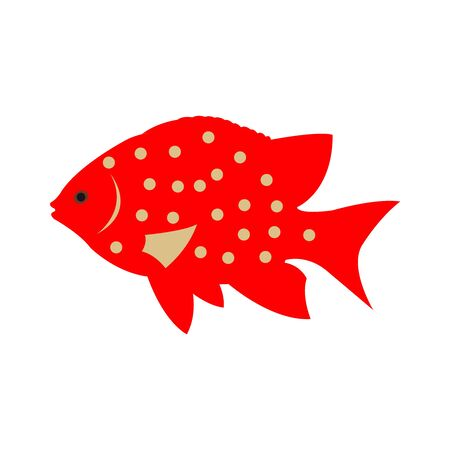 A Dark Red and Grey Tropical Fish on White