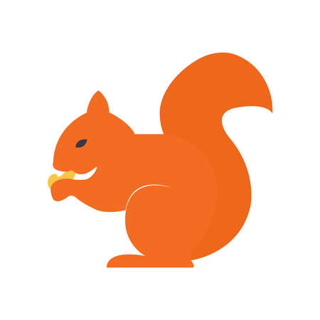 Cute orange squirrel sitting and eating nuts on white Ilustração