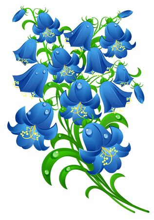 Blue flowers with water drops