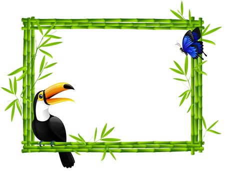 Bamboo frame with toucan and butterfly photo