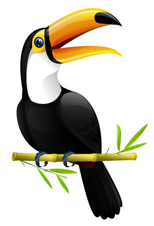 colorful toucan sitting on a bamboo branch , isolated on white Stock Photo
