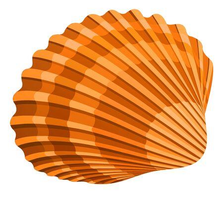 seashell Stock Photo - 3194346