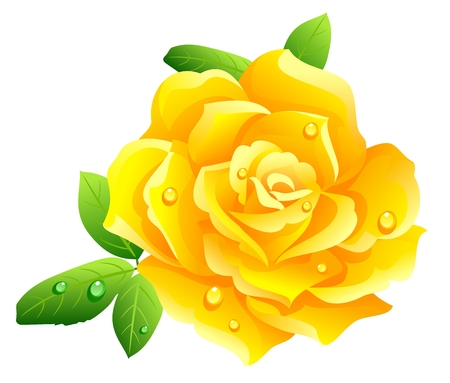 Yellow rose Stock Vector - 3216748