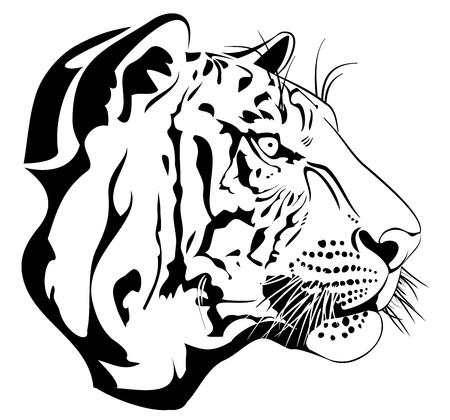 Tiger Stock Vector - 3232352