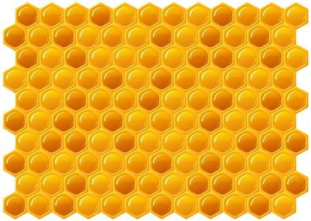 abejas panal: Panal textura de fondo