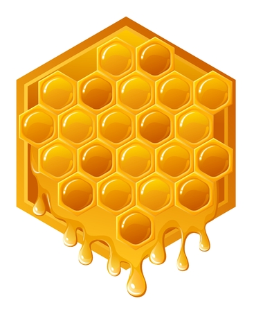 Honeycomb with flowing honey Illustration