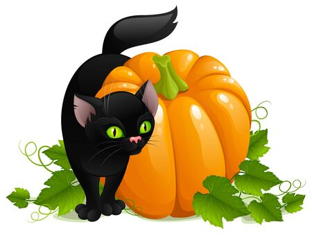 Black cat and pumpkin Stock Photo