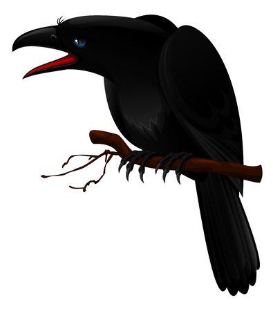Black crow Stock Photo - 3642532