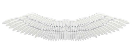 flap wings isolated on white Stock Photo - 7624810