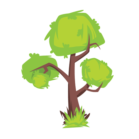 Tree with green foliage isolated on white background vector image 矢量图像