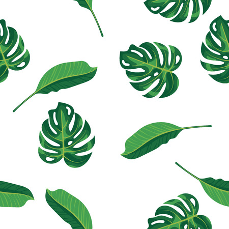 Pattern green leaves of tropical plant, palm and tree on white background. Seamless pattern green foliage monstera tree, natural background. Exotic rainforest plants and jungle garden