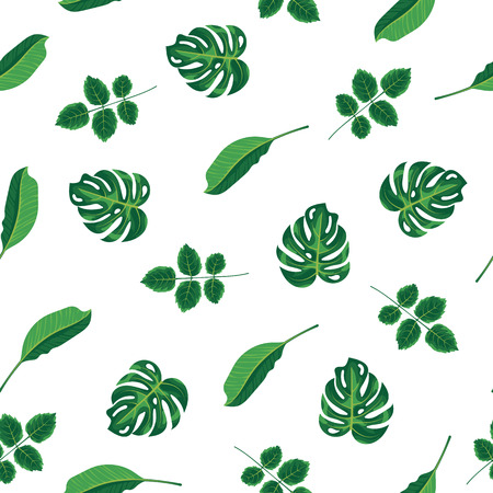 Pattern tropical green leaves of plant, palm and tree on white background. Seamless pattern green foliage monstera tree, natural background. Exotic rainforest plants, flora and nature concept