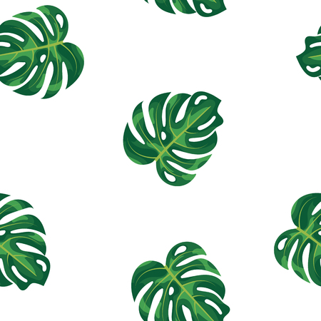 Pattern green leaves of tropical plant and tree on white background. Green foliage monstera tree seamless pattern background. Exotic rainforest plants