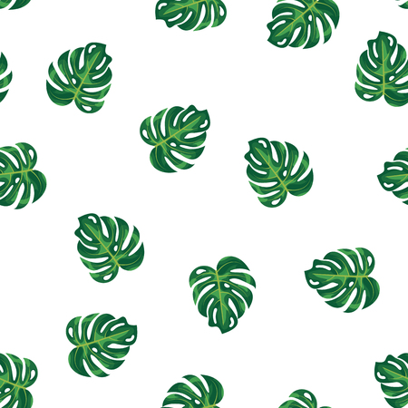 Green leaves of tropical plant and tree on white pattern background. Green foliage monstera tree seamless pattern background. Exotic rainforest plant philodendron and jungle garden