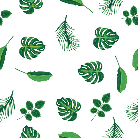 Foliage pattern of green tropical plant, palm and tree on white background. Pattern green leaves monstera tree, natural seamless background. Exotic rainforest plants, flora and nature concept