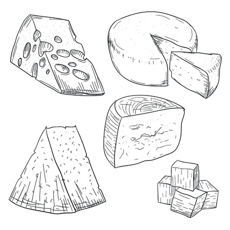Cheese collection doodle drawing on white background. Hand drawing cheese types. Fresh dairy and milk food. Healthy nutrition and diet. Organic milk butter. Stylish sketch design