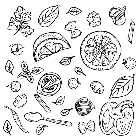 Hand drawing vegetables, herbs, spices for pasta in doodle style on white background. Doodle drawing vegetable and food ingredients. Italian cuisine. Food and dieting concept