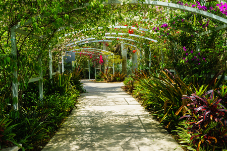 Arch covered with bright colorful flowers at botanical garden in Naples FL Stock Photo