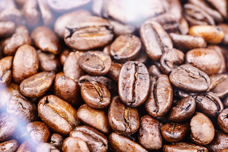 Roaster: Roasted coffee beans right from the roaster with white smoke