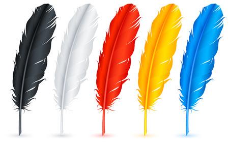 pluma blanca: Plumas. Vectores