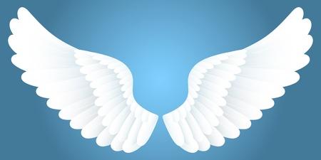 alas de angel: Alas blancas.