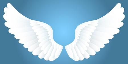 angel wing: White wings. Illustration